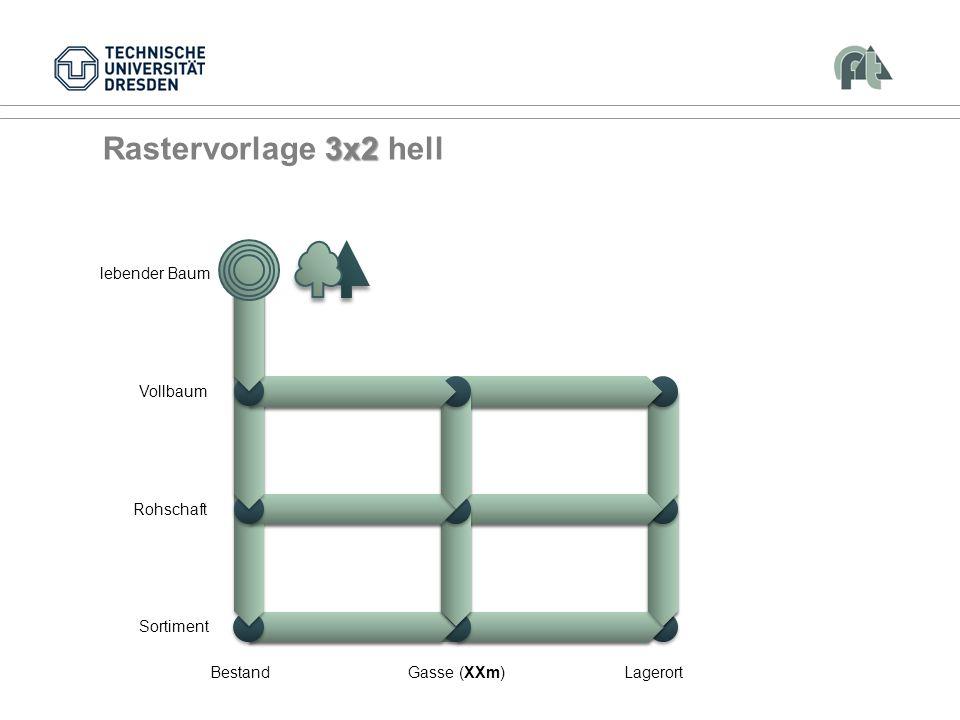 Rastervorlage 3x2 hell Vollbaum Rohschaft Sortiment Bestand