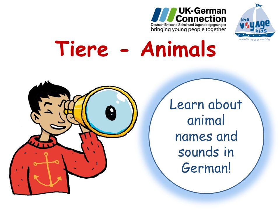 Learn about animal names and sounds in German!