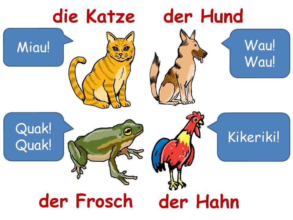 die Katze der Hund der Frosch der Hahn Miau! Wau! Wau! Quak! Quak!