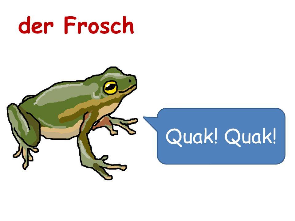 der Frosch Quak! Quak!