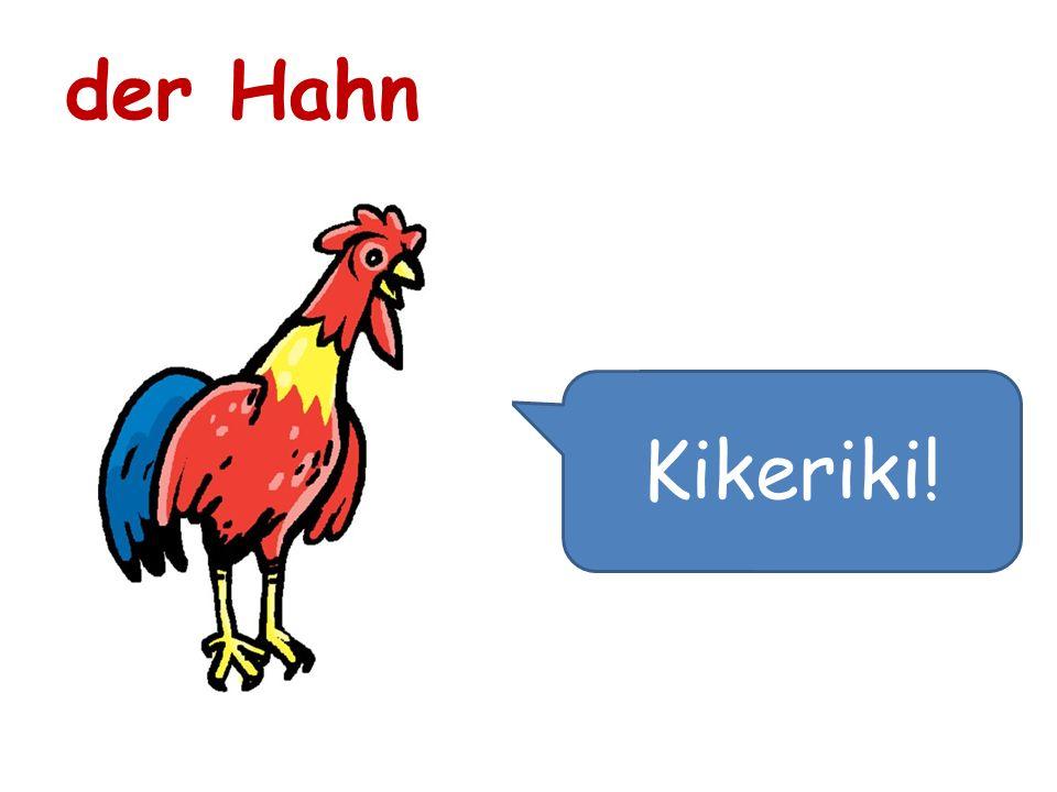 der Hahn Kikeriki!