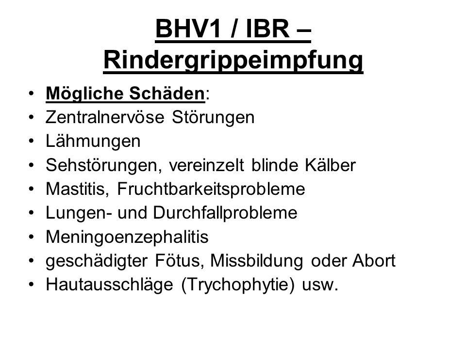 BHV1 / IBR – Rindergrippeimpfung