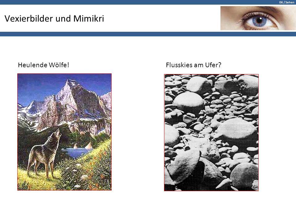 Vexierbilder und Mimikri