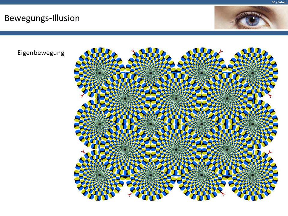 Bewegungs-Illusion Eigenbewegung