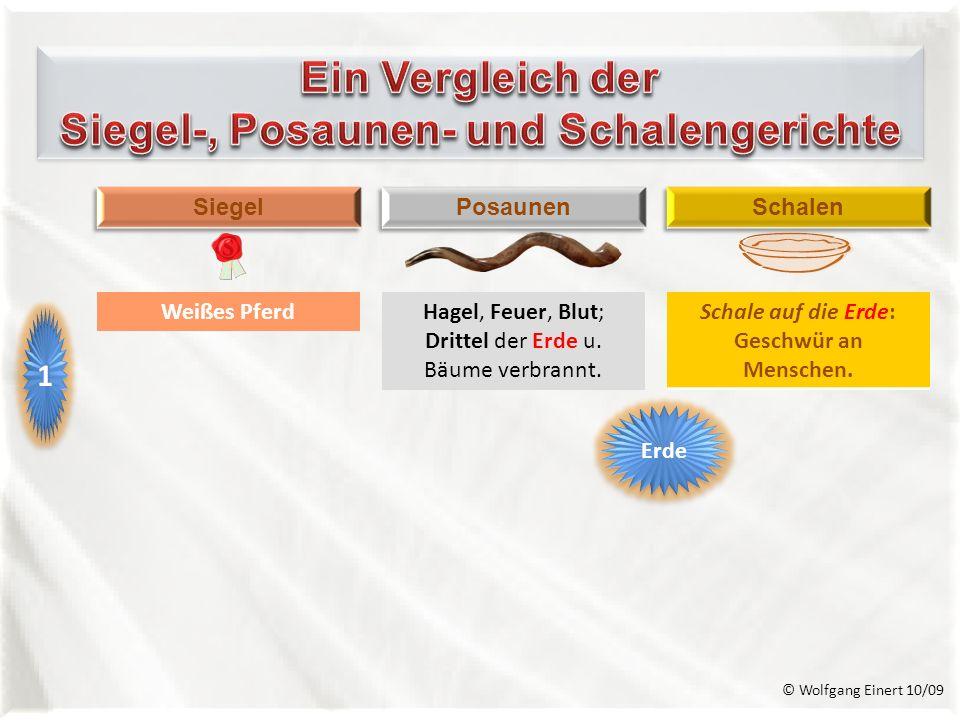 Siegel-, Posaunen- und Schalengerichte