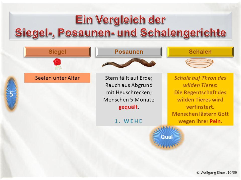 Ein Vergleich der Siegel-, Posaunen- und Schalengerichte