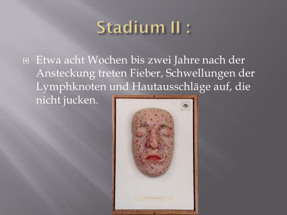 Stadium II :