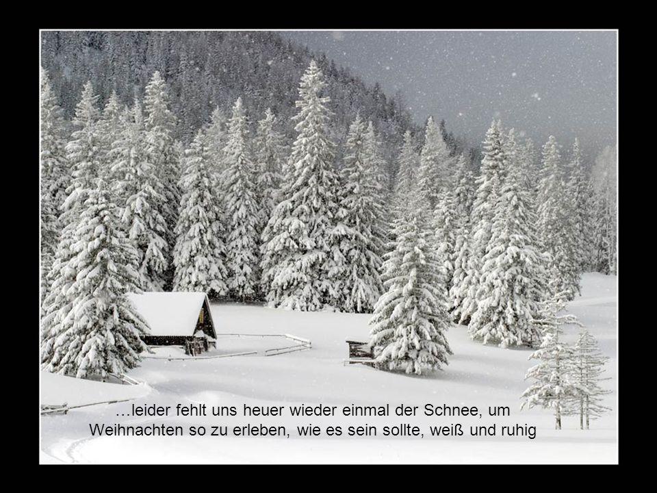 …leider fehlt uns heuer wieder einmal der Schnee, um Weihnachten so zu erleben, wie es sein sollte, weiß und ruhig