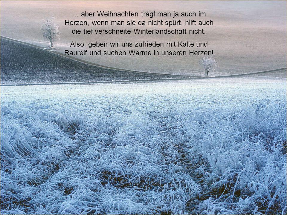 … aber Weihnachten trägt man ja auch im Herzen, wenn man sie da nicht spürt, hilft auch die tief verschneite Winterlandschaft nicht.