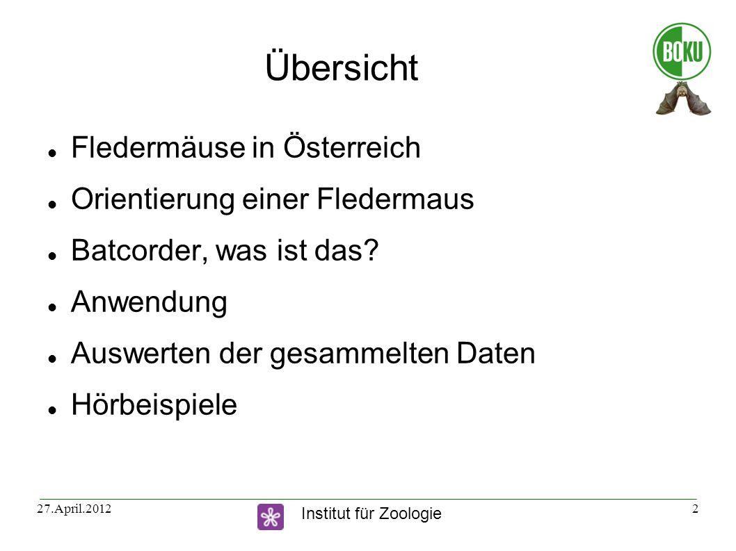 Übersicht Fledermäuse in Österreich Orientierung einer Fledermaus