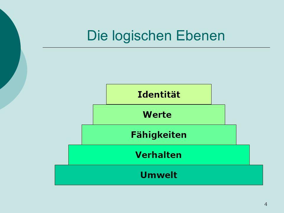 Die logischen Ebenen Identität Werte Fähigkeiten Verhalten Umwelt