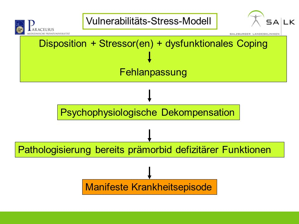 Disposition + Stressor(en) + dysfunktionales Coping