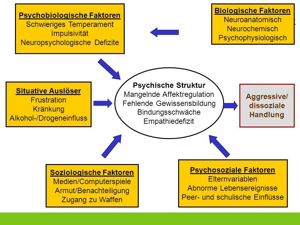 Psychobiologische Faktoren Schwieriges Temperament Impulsivität