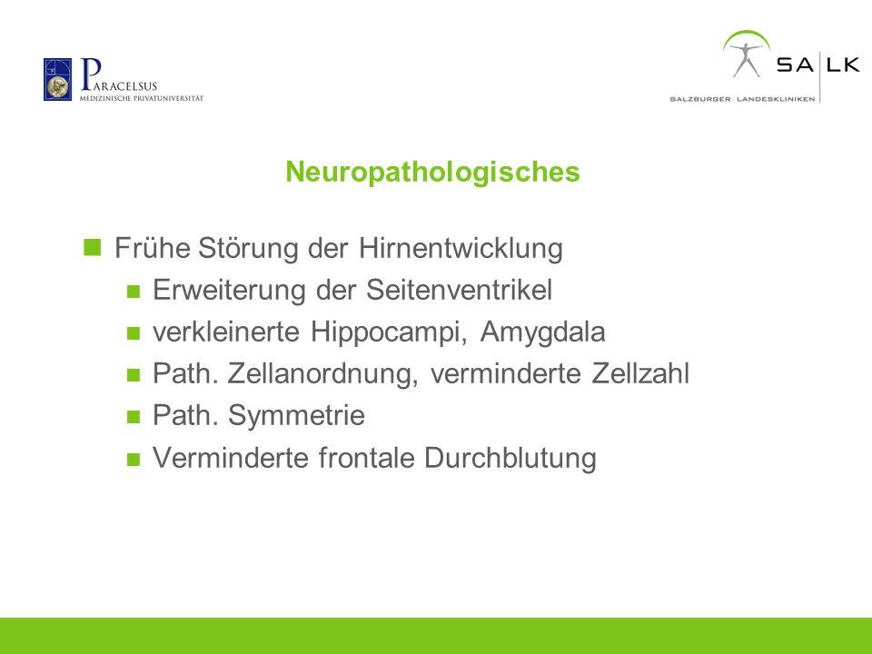 Neuropathologisches Frühe Störung der Hirnentwicklung. Erweiterung der Seitenventrikel. verkleinerte Hippocampi, Amygdala.