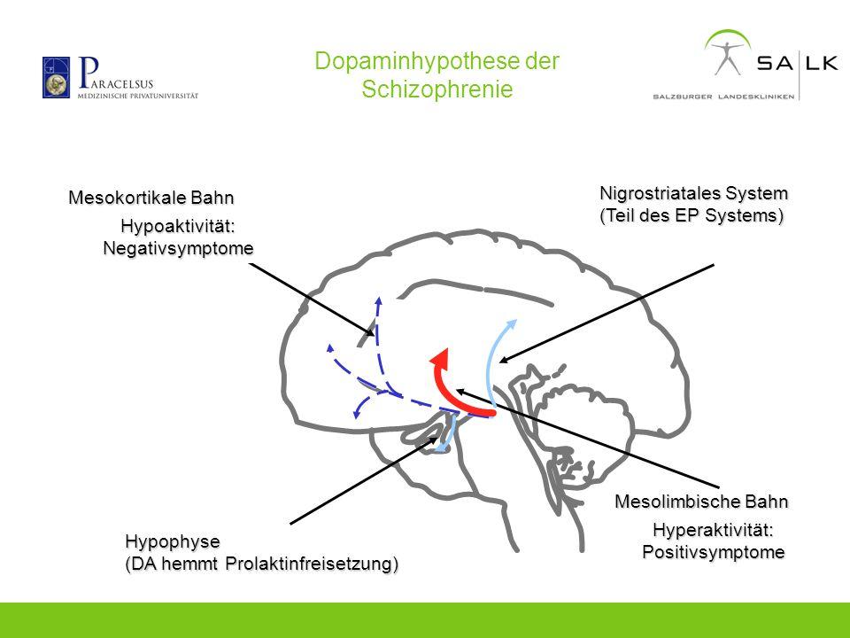 Dopaminhypothese der Schizophrenie