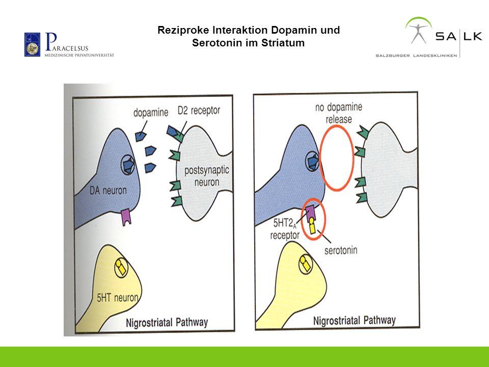 Reziproke Interaktion Dopamin und Serotonin im Striatum