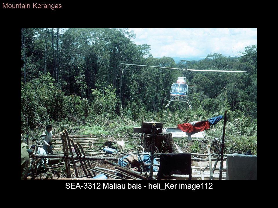 SEA-3312 Maliau bais - heli_Ker image112