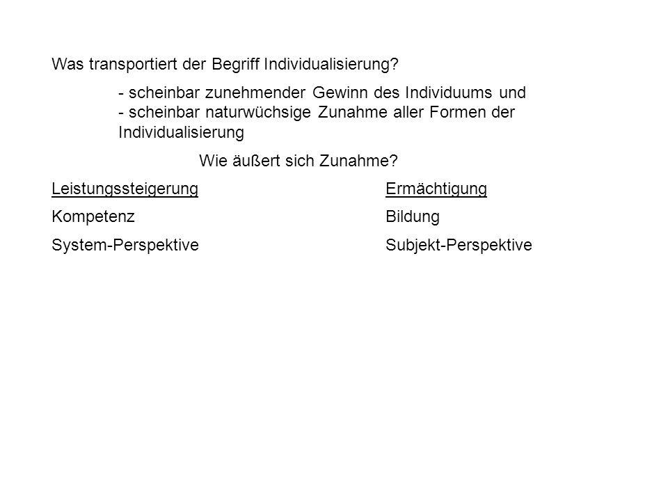 Was transportiert der Begriff Individualisierung