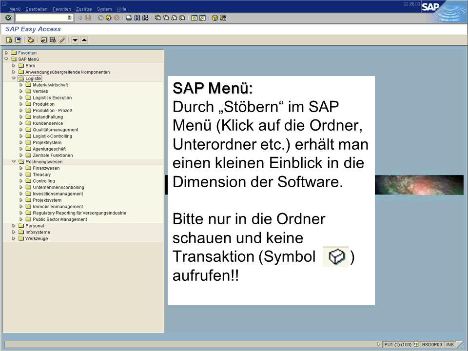 """SAP Menü: Durch """"Stöbern im SAP Menü (Klick auf die Ordner, Unterordner etc.) erhält man einen kleinen Einblick in die Dimension der Software."""