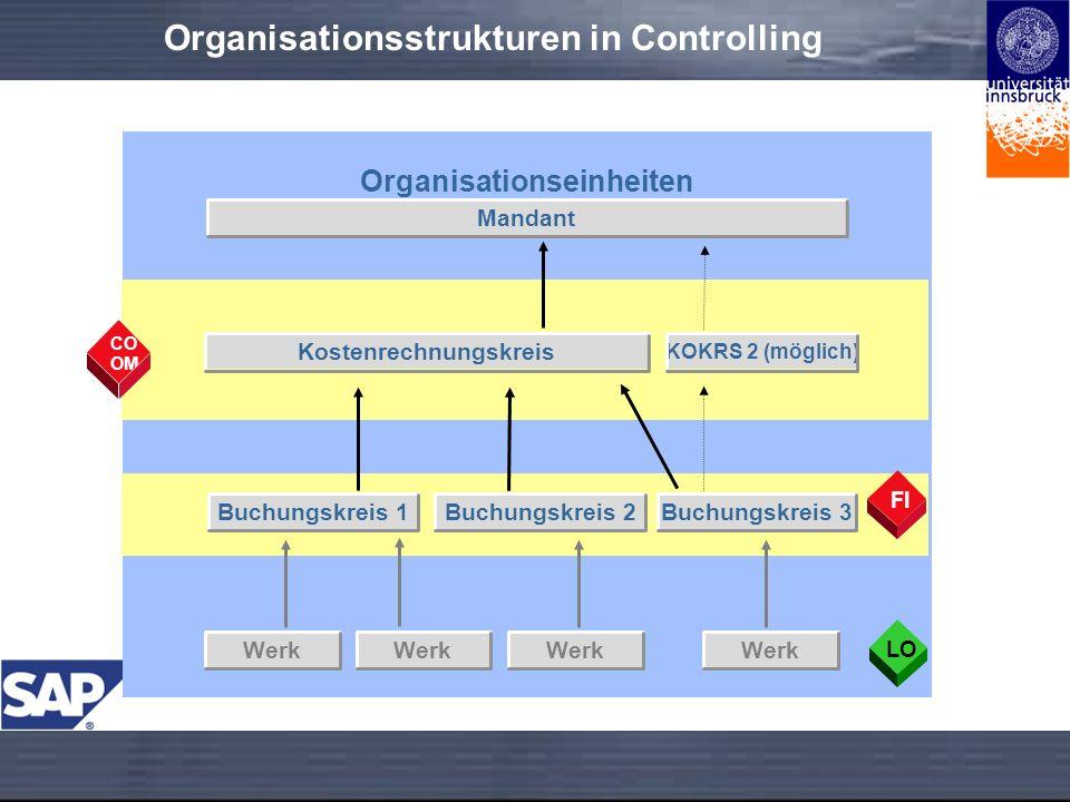 Organisationsstrukturen in Controlling