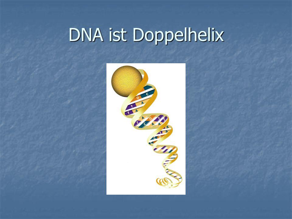 DNA ist Doppelhelix