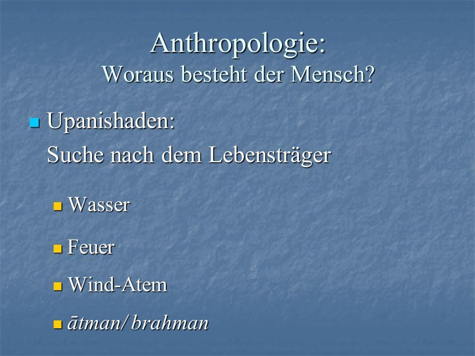 Anthropologie: Woraus besteht der Mensch