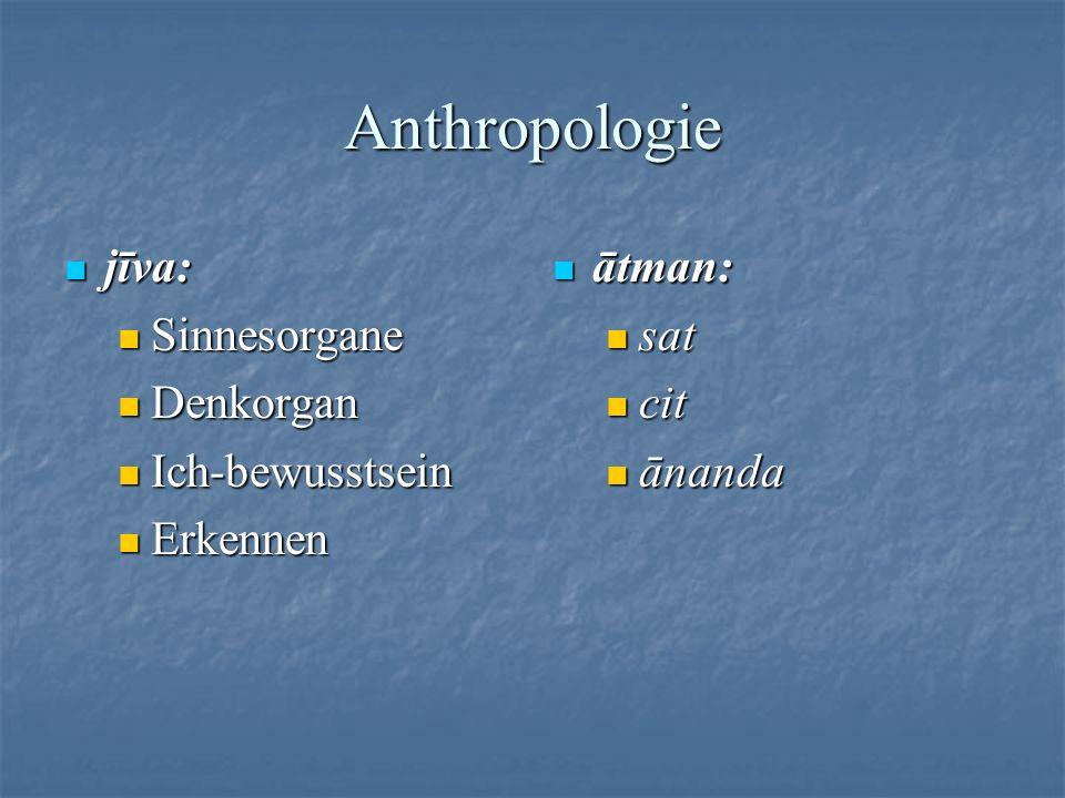 Anthropologie jīva: Sinnesorgane Denkorgan Ich-bewusstsein Erkennen