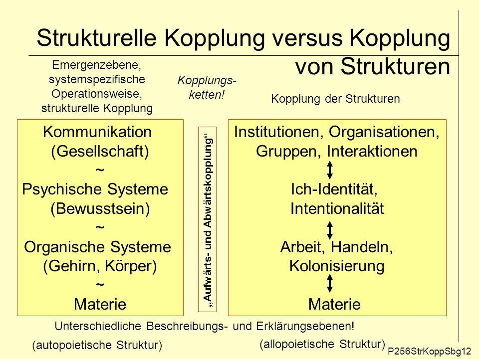 Strukturelle Kopplung versus Kopplung von Strukturen