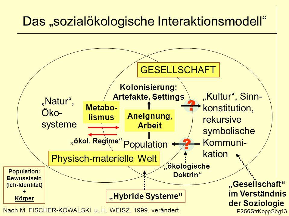 """Das """"sozialökologische Interaktionsmodell"""