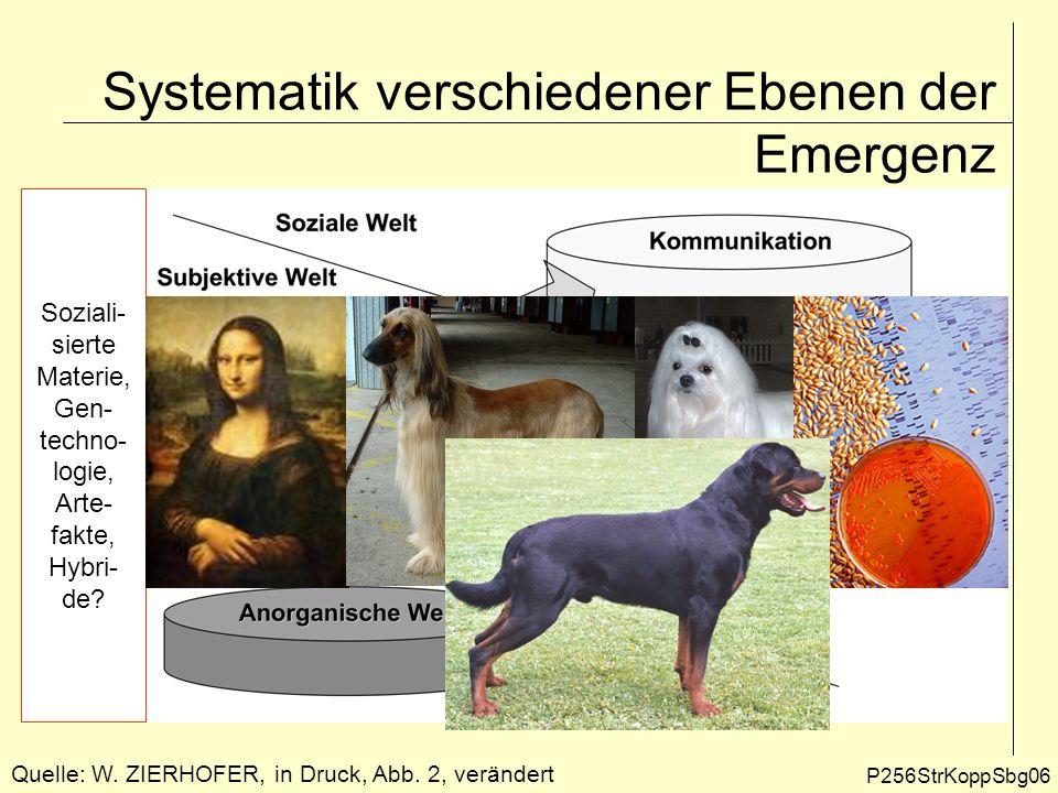Systematik verschiedener Ebenen der Emergenz