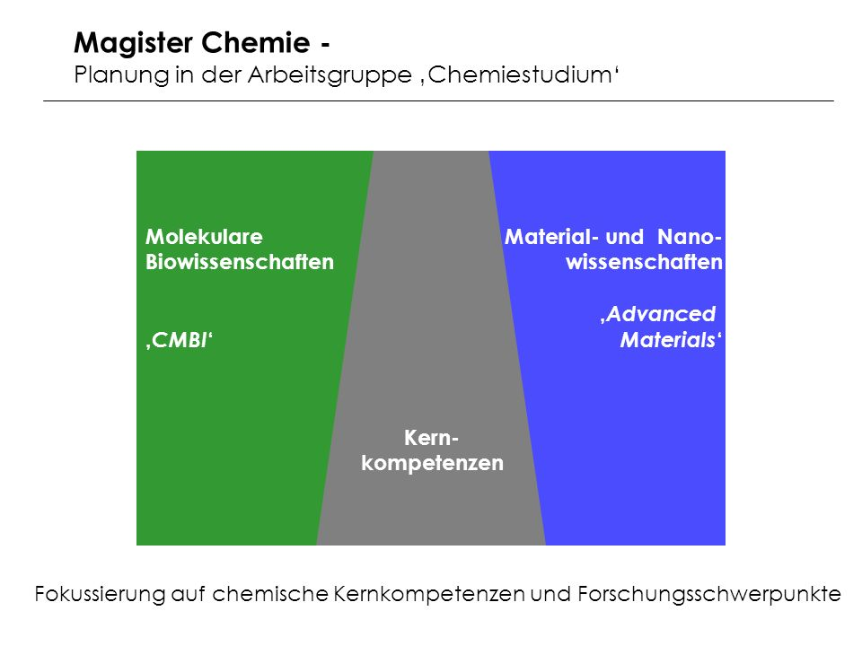 Magister Chemie - Planung in der Arbeitsgruppe 'Chemiestudium'