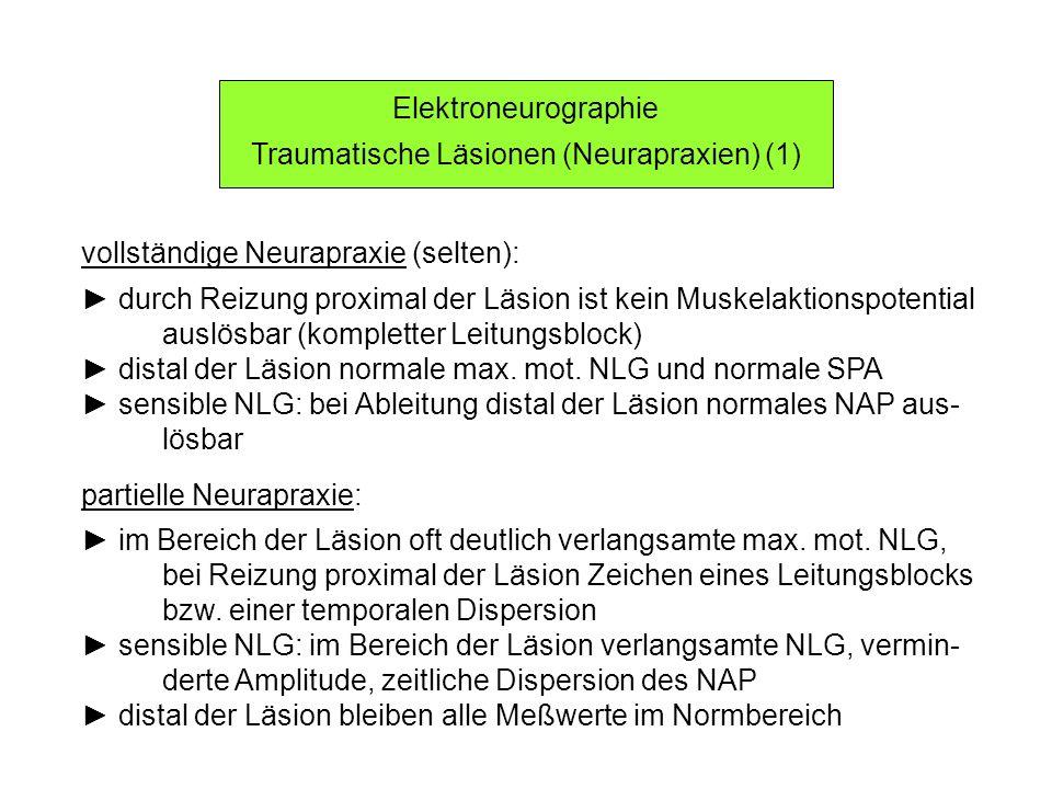 Traumatische Läsionen (Neurapraxien) (1)