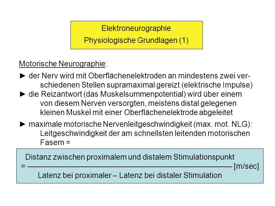 Physiologische Grundlagen (1)