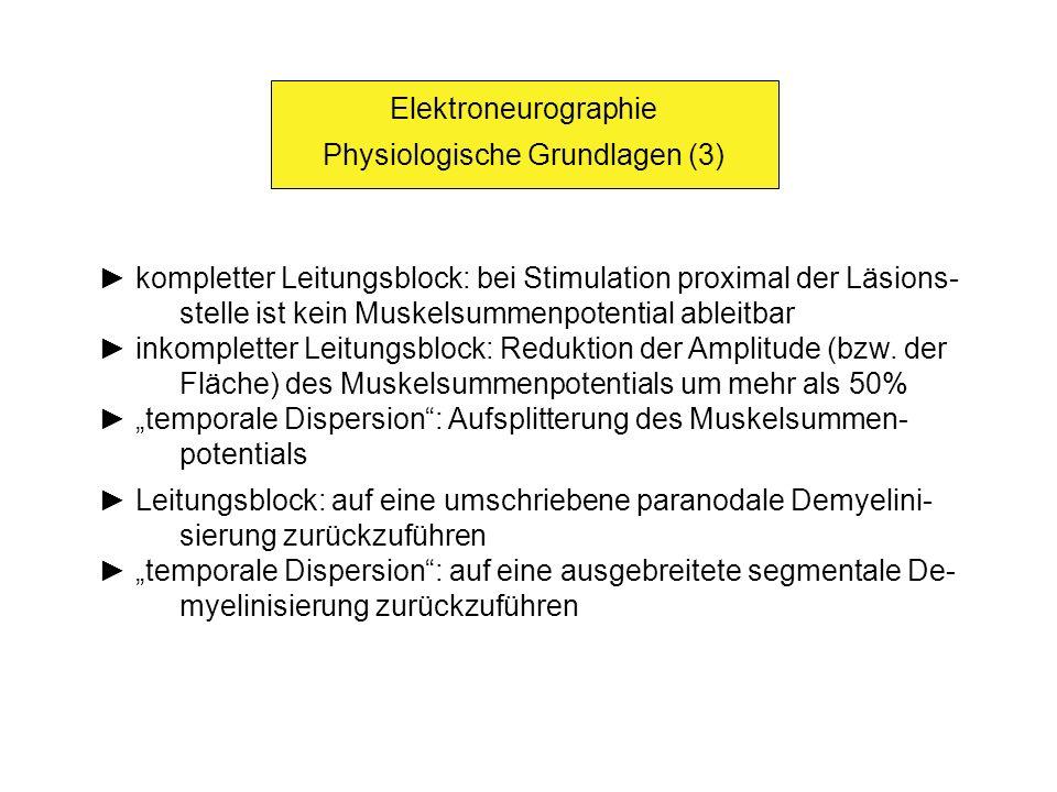 Physiologische Grundlagen (3)