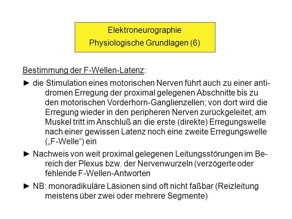 Physiologische Grundlagen (6)