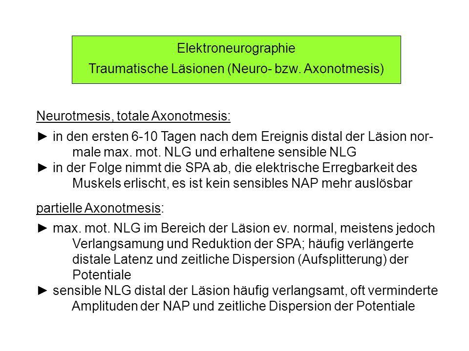 Traumatische Läsionen (Neuro- bzw. Axonotmesis)