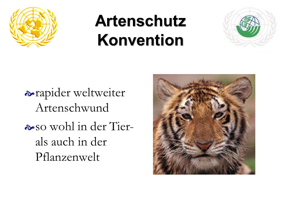 Artenschutz Konvention