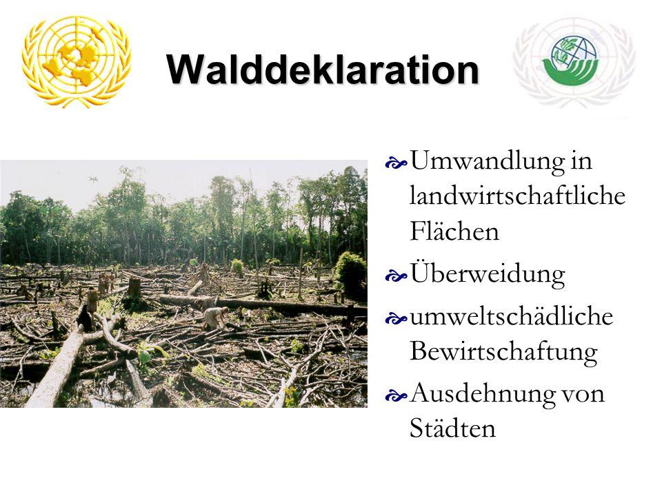 Walddeklaration Umwandlung in landwirtschaftliche Flächen Überweidung