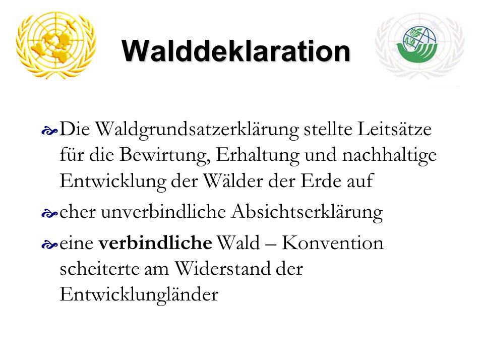 Walddeklaration Die Waldgrundsatzerklärung stellte Leitsätze für die Bewirtung, Erhaltung und nachhaltige Entwicklung der Wälder der Erde auf.
