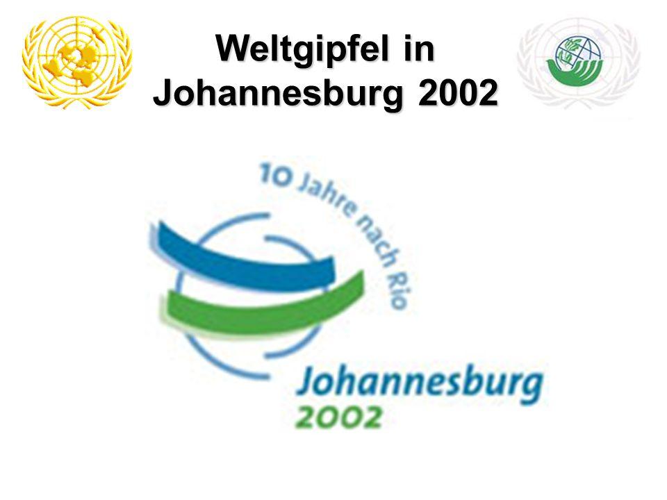 Weltgipfel in Johannesburg 2002