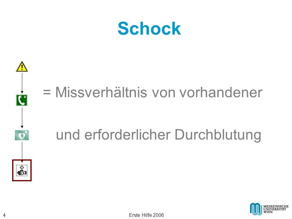 Schock = Missverhältnis von vorhandener
