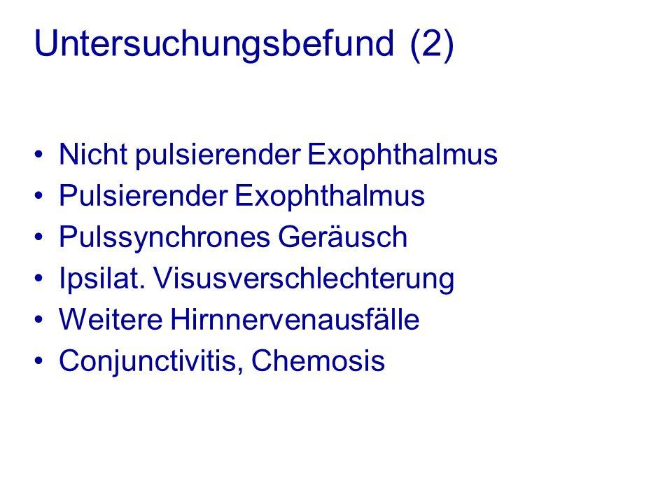 Untersuchungsbefund (2)