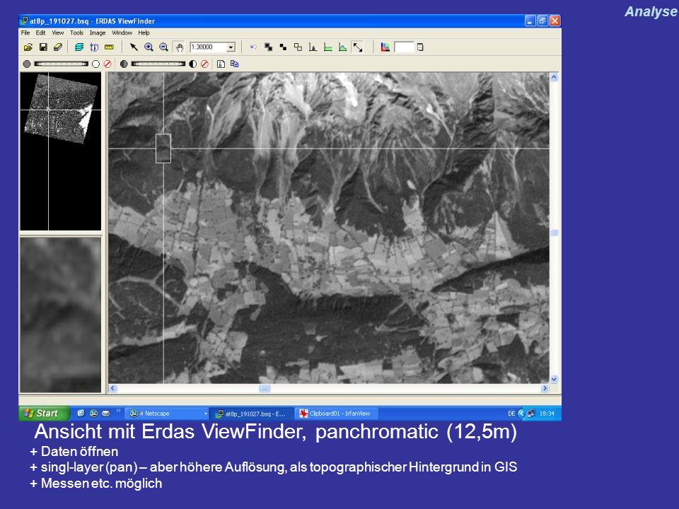 Ansicht mit Erdas ViewFinder, panchromatic (12,5m)