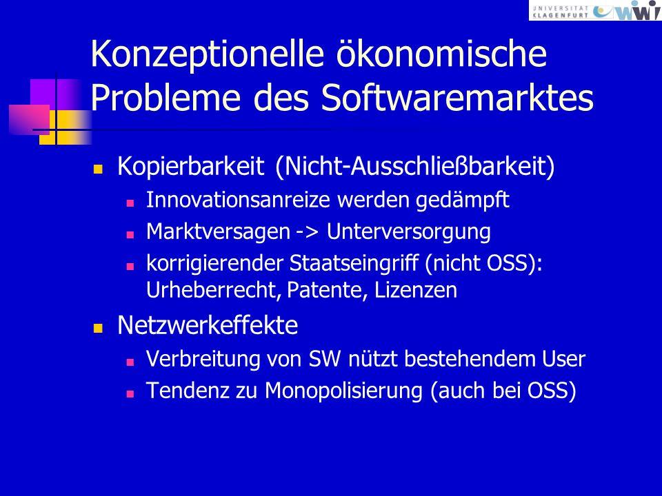 Konzeptionelle ökonomische Probleme des Softwaremarktes
