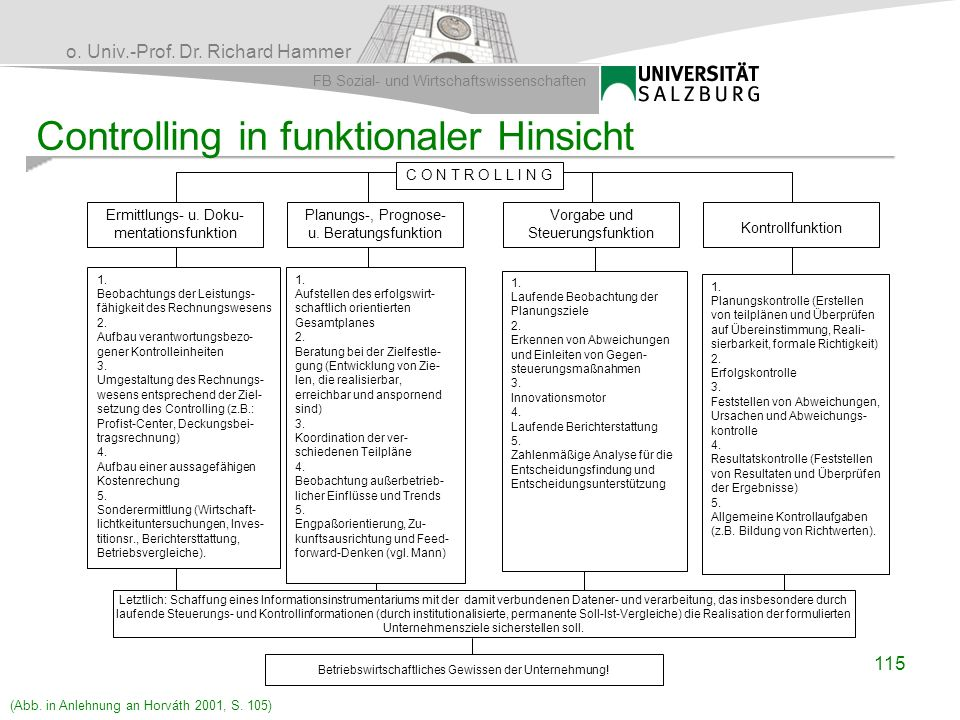 Controlling in funktionaler Hinsicht