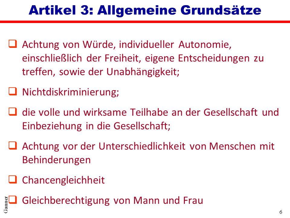 Artikel 3: Allgemeine Grundsätze