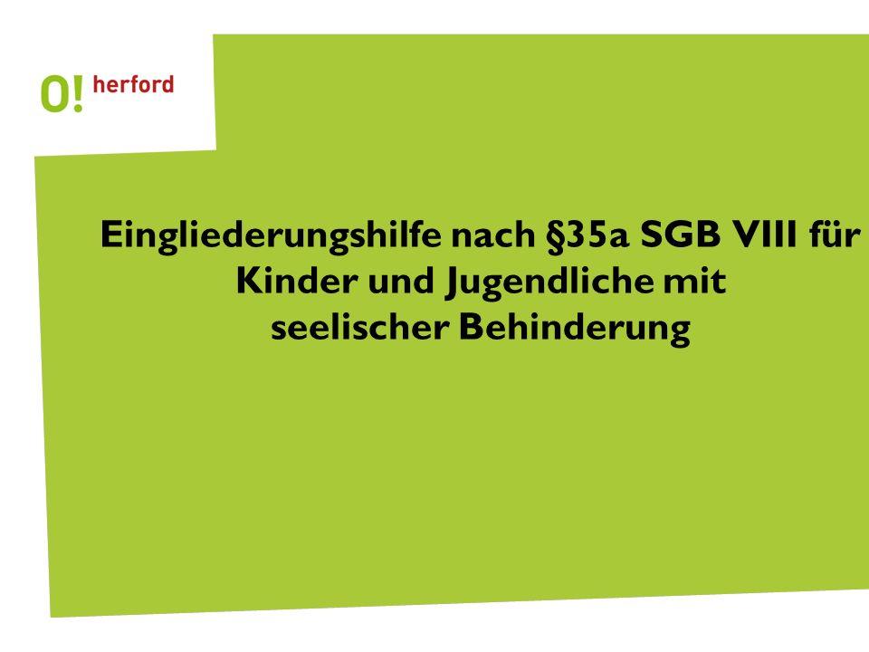 Eingliederungshilfe nach §35a SGB VIII für Kinder und Jugendliche mit seelischer Behinderung