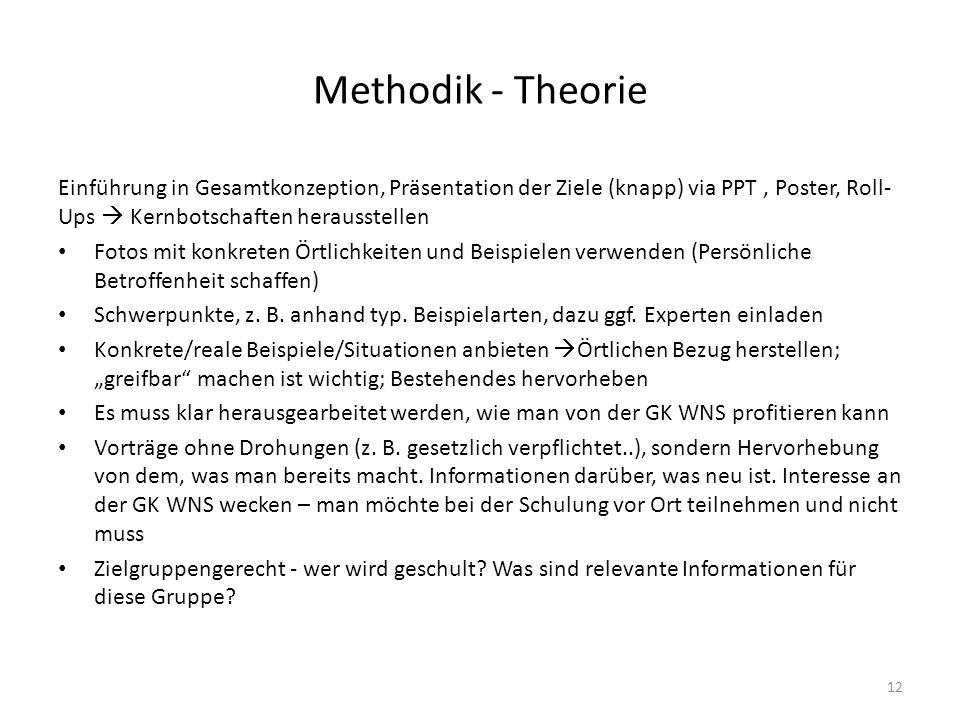 Methodik - Theorie Einführung in Gesamtkonzeption, Präsentation der Ziele (knapp) via PPT , Poster, Roll-Ups  Kernbotschaften herausstellen.