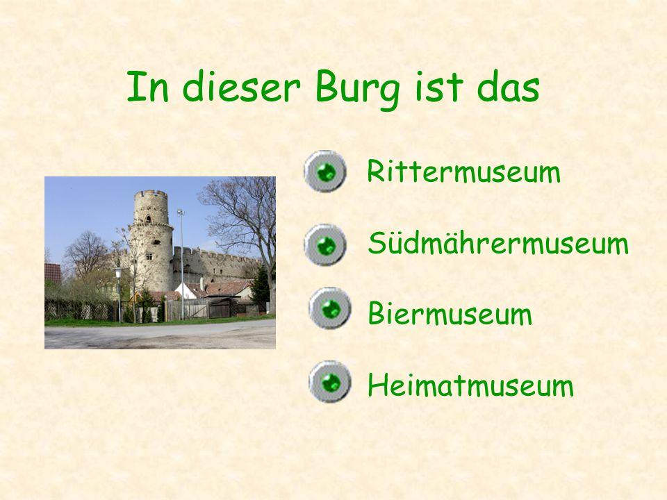 In dieser Burg ist das Rittermuseum Südmährermuseum Biermuseum
