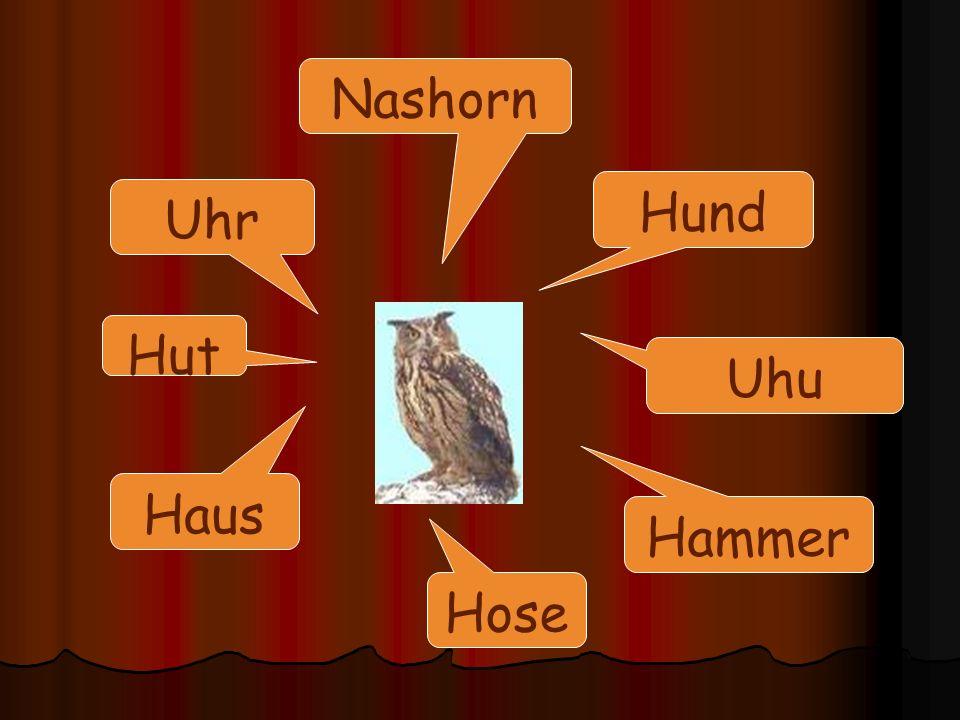 Nashorn Hund Uhr Hut Uhu Haus Hammer Hose